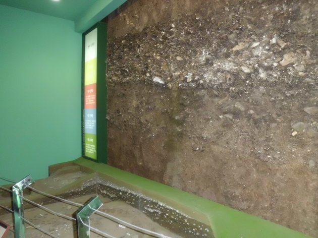 Inside Dongsamdong Shell Midden Museum 1