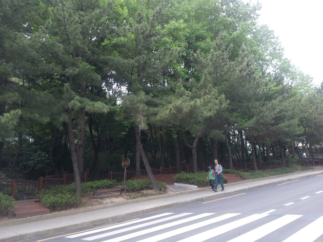 Inclined road in front of Library 1 of Pusan National University