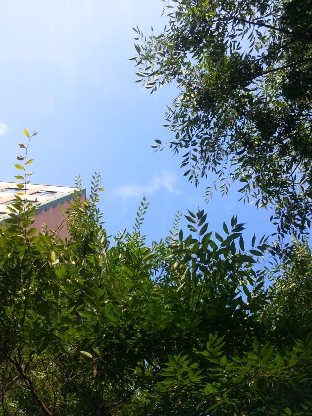 Langit Busan sudah membiru lagi :)