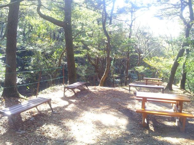 "Banyak tempat ""rest area"" untuk piknik di sepanjang jalan di dalam hutan"