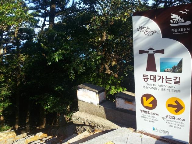 Menuju Yeongdo Lighthouse ada 2 pilihan jalur: menanjak dan biasa; kami pilih jalur menanjak :D